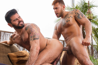 Kamaráti Gay porno
